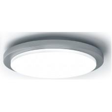 LED светильник уличный MAXUS Wall/Ceiling Lamp 20W 4000K C DG
